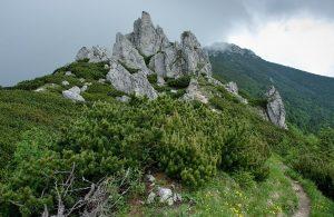Sivý-vrch-chodník-na-vrchol-1-300x195