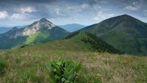Okruh-Štefanová-Stoh-výhled-na-Rozsutec-a-Stoh-s-kýchavicí-300x170