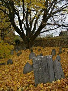 Zid.-hrbitov-Vlachovo-b.-FG-201004-225x300